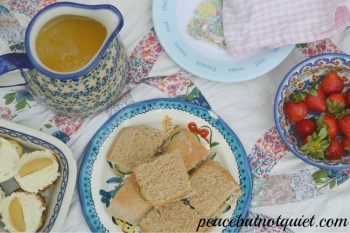 A Spring Picnic (and a Lemonade Recipe!)