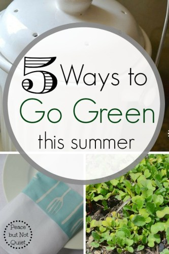 5 Ways to Go Green This Summer