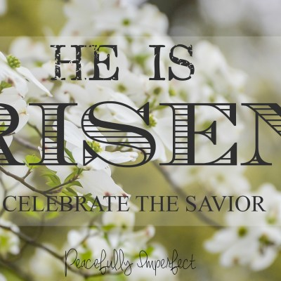 The resurrection of Christ is our hope and promise