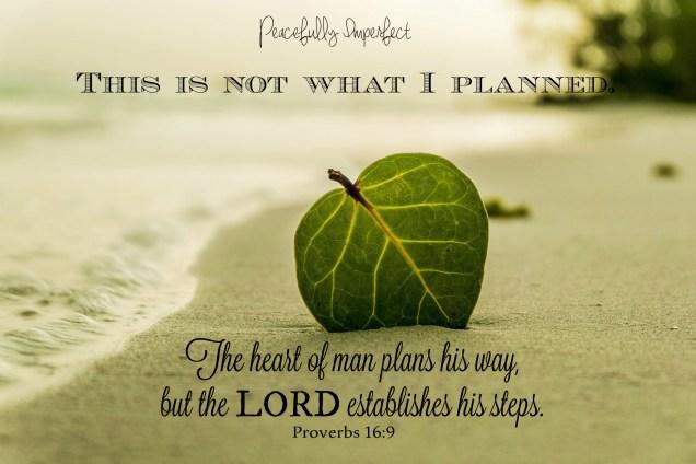 leaf quote (2)