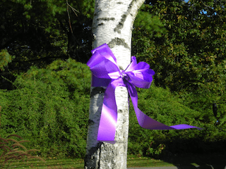 October 2018 Events for Domestic Violence Awareness Month