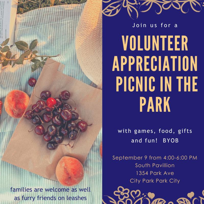 Volunteer Appreciaition Picnic in the Park