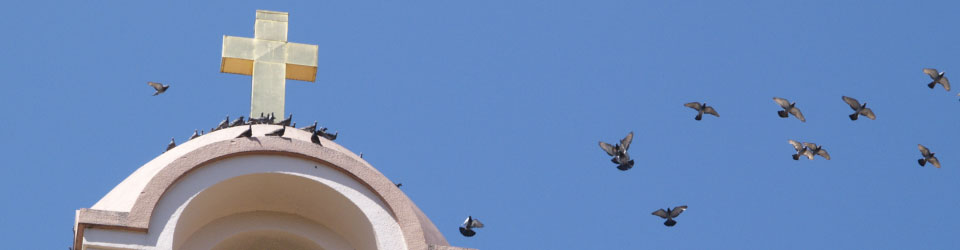 Steeple with Birds