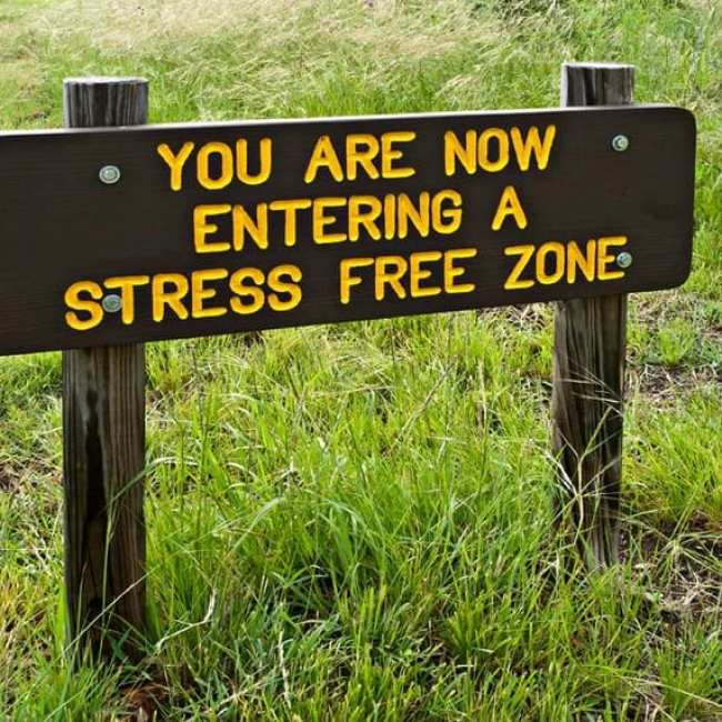 You are Now Entering a Stress Free Zone