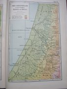 The Shephelah