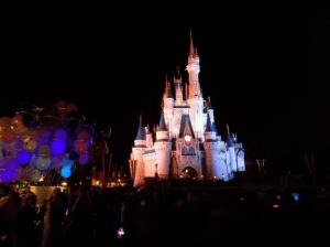 Disney castle illuminated in the dark