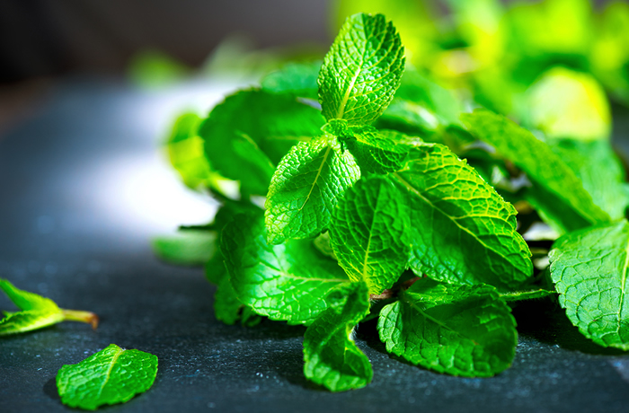 Benefits of Mint for Endometriosis & Mint Smoothie Recipe