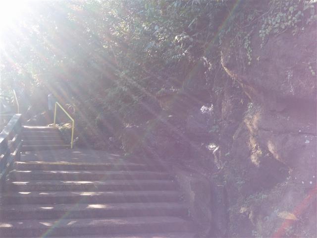 Brasilian Falls 43