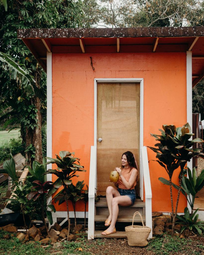 Best Spots to Eat in Kauai Hawaii