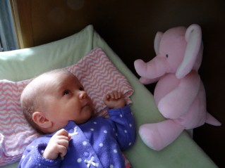 baby with a pink elephant plush