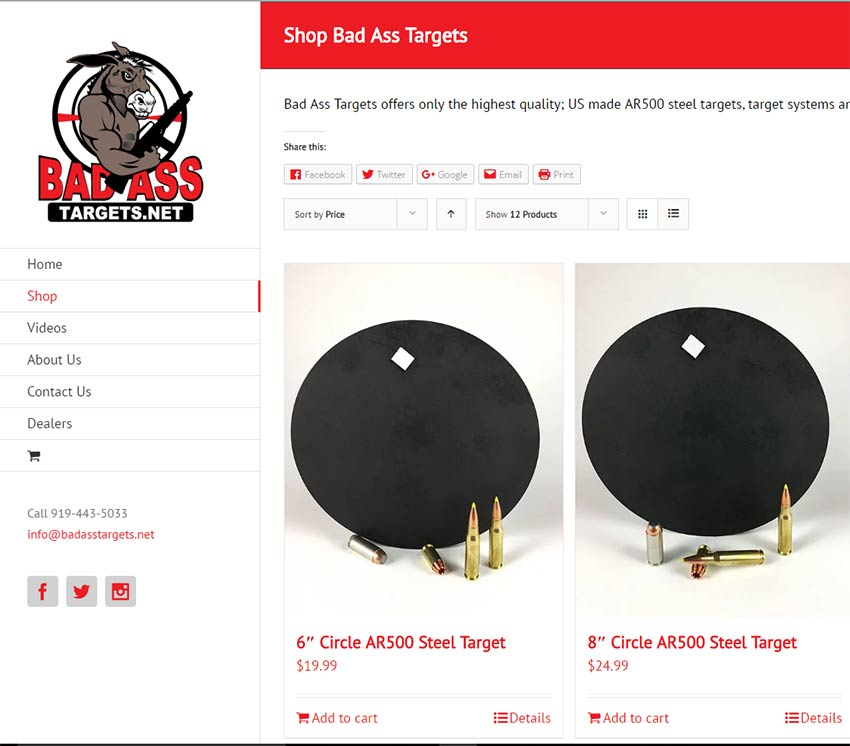 bad ass target website and logo design