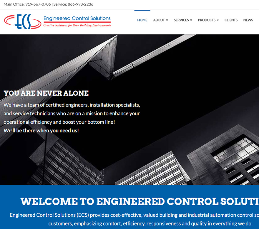 ECS Website Design and Optimization