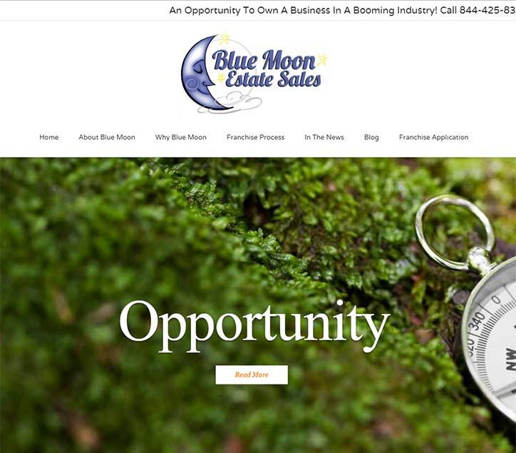 Franchise Website Design
