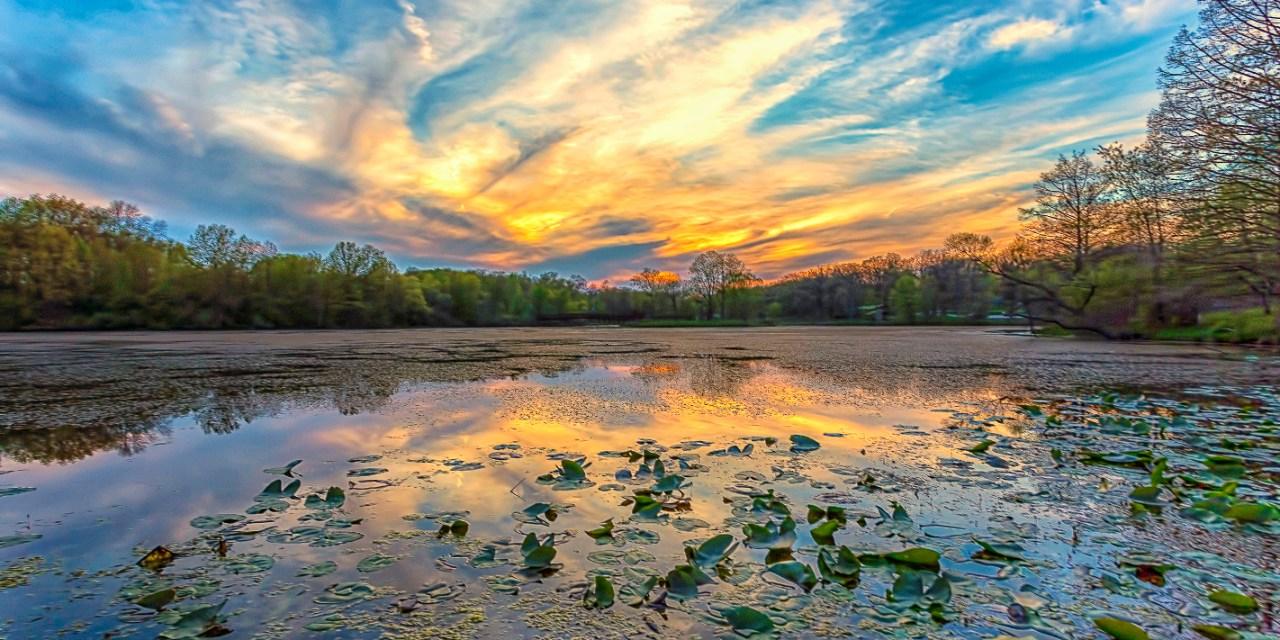 Edward Byrne – Four Seasons in  Northern Indiana