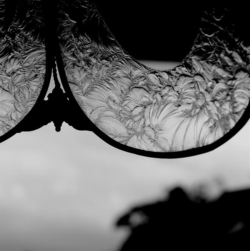 Heron by Eileen Murphy