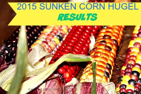 2015 Sunken Corn Hugel Results