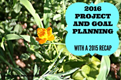 2016 Project and Goal Planning