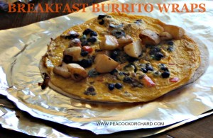 Eggtastic Tuesday- Breakfast Burrito Wraps