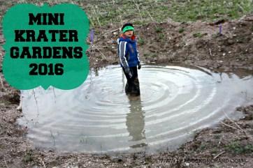 Mini Krater Gardens 2016