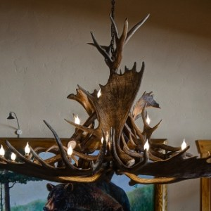 522-XL moose elk antler chandelier oval