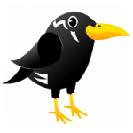 Social Myna - Social Media Management and Training