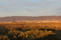 The Flinders Ranges just before the sun goes down