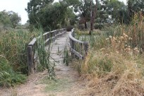 The creek crossing