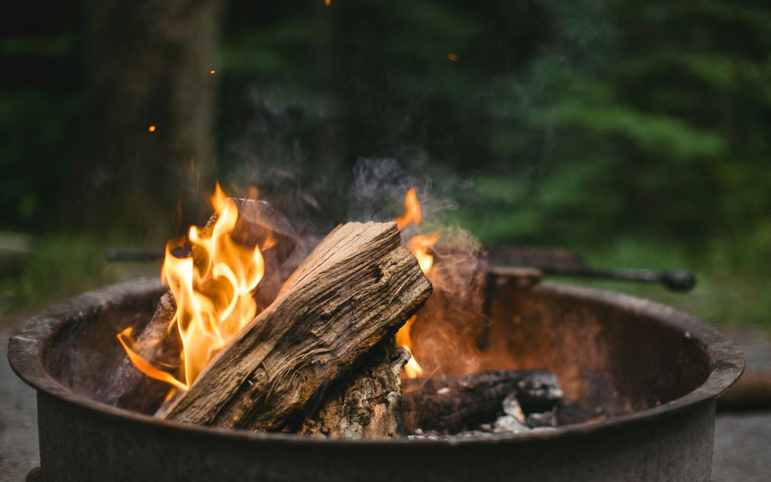 How to get the best firewood for your wood burning stove
