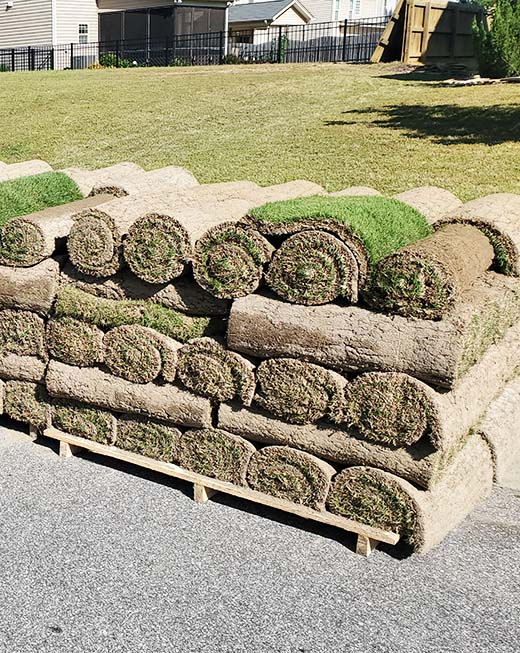 Sod Installer with Best Sod from Local Sod Farmers