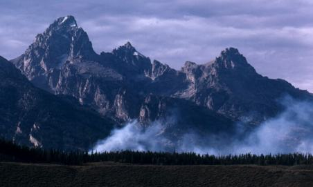 Grand Teton National Park forest fire a juxtoposition of destruction and renewal.