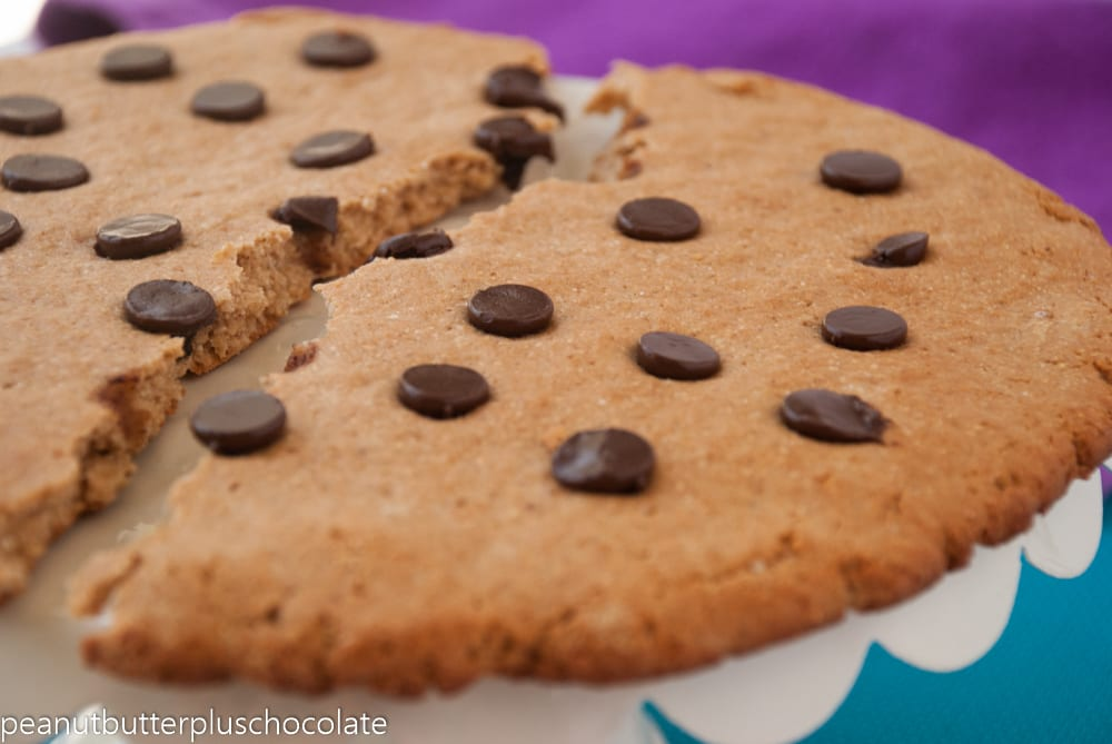 Healthy Giant Chocolate Chip Peanut Butter Protein Cookie