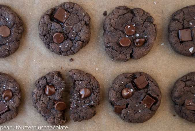 Double-Chocolate-Protein-Cookies