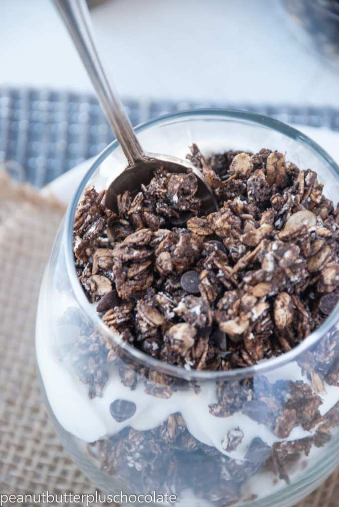 Chocolate Chia Granola {High Fiber + High Protein}