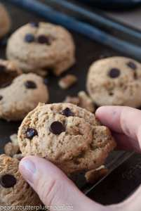 healthy-chocolate-chip-walnut-cookies6