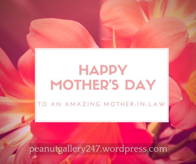 Happy Mothers Day Mother in law - Peanut Gallery 247