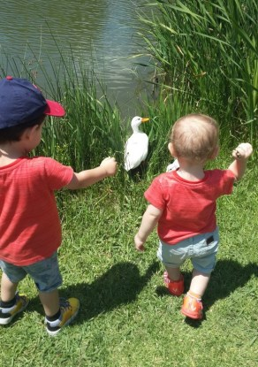 Things to Do, Places to See - with Kids in Joburg Old MacDonald's Farm Yard - PeanutGallery247.jpg