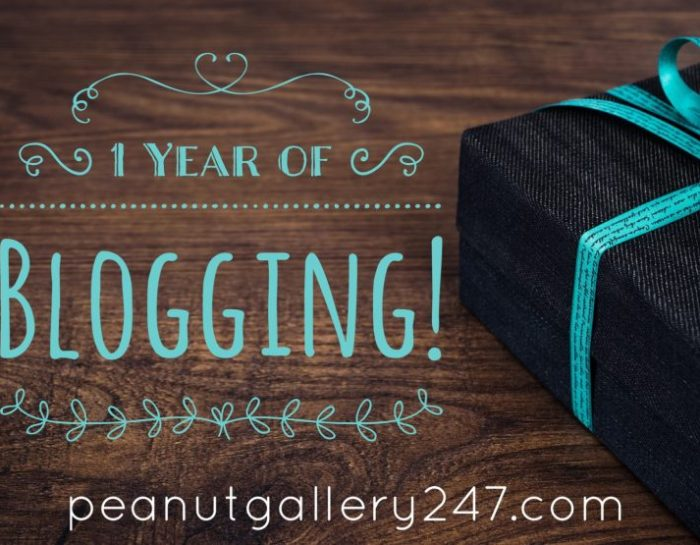 Peanut Gallery 247 Turns 1! Happy Blog Birthday