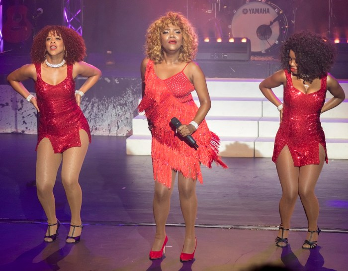 Tina – Simply the Best Tribute Show (Review)
