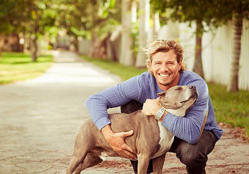 Your behaviors and attitudes towards your dog
