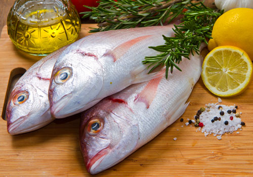 Eating fish helps your pet lose weight