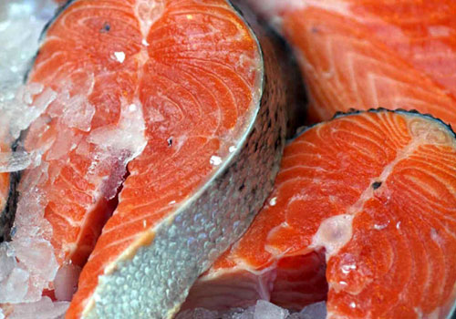 Raw fish sometimes poses health risk for pets