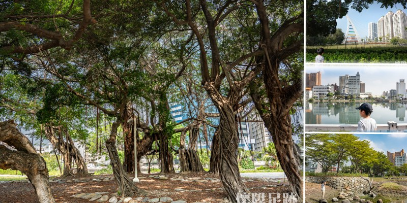 台南公園|走訪中西區最美生態公園,沿著步道一路走到河樂廣場|大涼生態公園