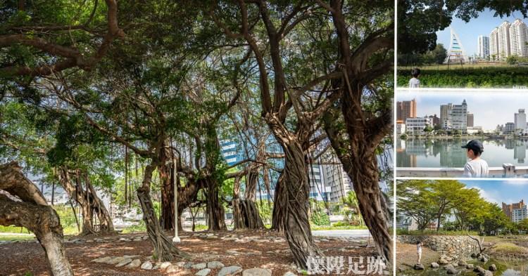 台南公園 走訪中西區最美生態公園,沿著步道一路走到河樂廣場 大涼生態公園