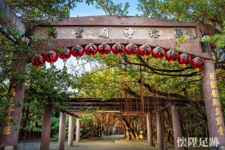 50年前風靡台南的景點,至今是什麼模樣?只有一棵樹卻長成一片森林的壯闊奇景 十二佃神榕