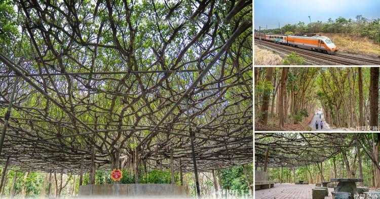 台南景點|川文山森林生態保育農場,寧靜舒適的台南森林步道,尋找藏在森林中的賞火車秘境