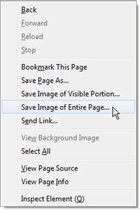 browser context menu with Page Saver items
