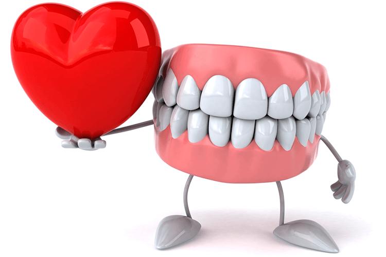 Holistic Dentist Ottawa Ontario