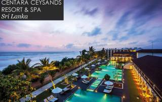 Pearl King Travel - Centara Ceysands Resort & Spa, Sri Lanka