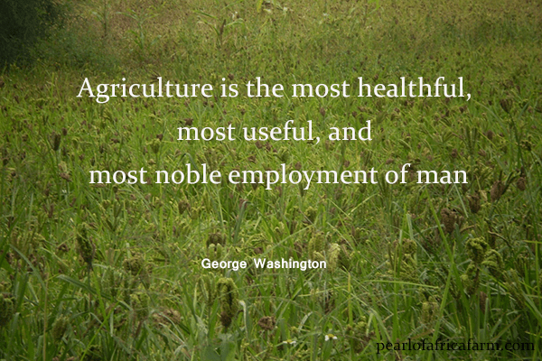 Agriculture is the most healthful, most useful, and most noble employment of man