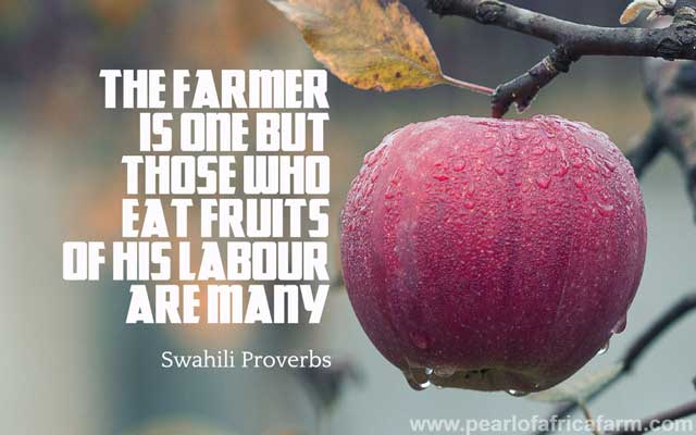 The-farmer-is-one-but-those-who-eat-fruits-of-his-labour-are-many